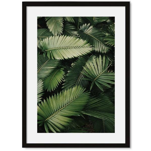 Botanische poster