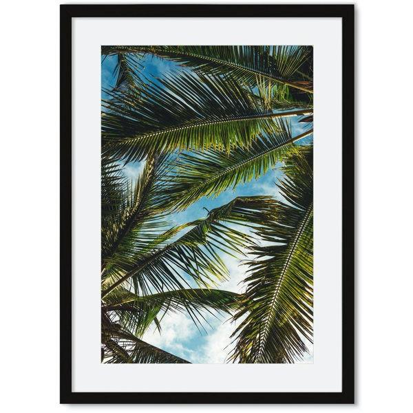 Palmbladeren