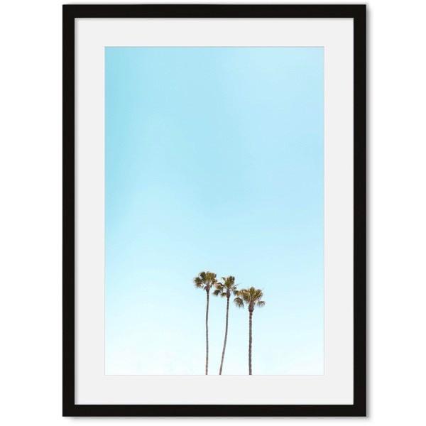Palmbomen poster Miami