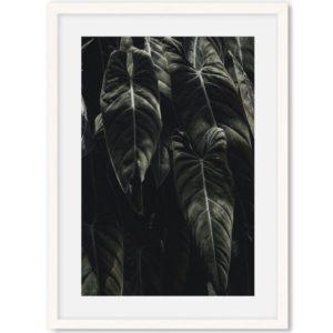 Poster van bos