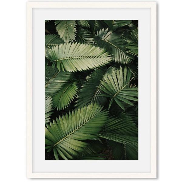 Poster van jungle 2