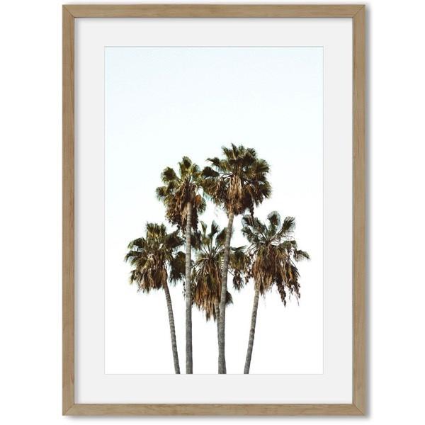 Poster van palmbomen