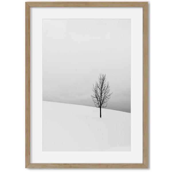 Sneeuw poster