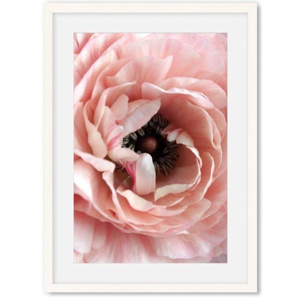 bloemen poster roze