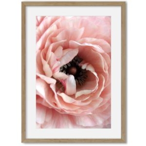 poster van bloem