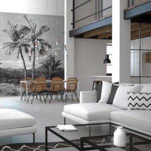 Zwart & Wit palmbomen behang