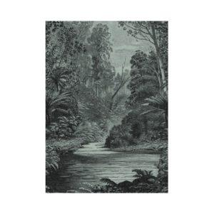 zwart wit regenwoud behang