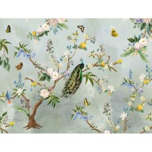 Behang tropische vogels Turqoise