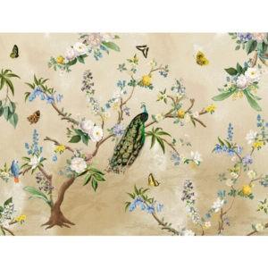 Behang tropische vogels 2